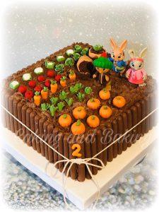 Peter Rabbit Chocolate Cake